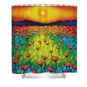 Sunburst Poppies Shower Curtain