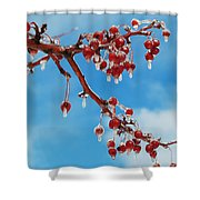 Sunday With Cherries On Top Shower Curtain