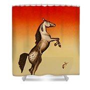 Sundown Dancer Shower Curtain