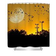Sundown Fantasy Orange Shower Curtain