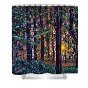 Sundown In Woods Shower Curtain
