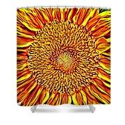 Sunflower 3 Shower Curtain