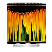 Sunflower Abstract 2 Shower Curtain