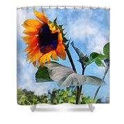 Sunflower Against The Sky Shower Curtain