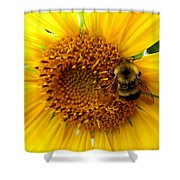 Sunflower And A Bee Shower Curtain