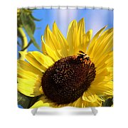 Sunflower And Bee-3879 Shower Curtain