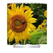 Sunflower And Bee II Shower Curtain