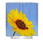 Sunflower And Ladybird Beetle 2am-110488 Shower Curtain