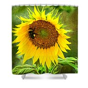 Sunflower And Visitors Shower Curtain