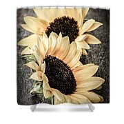 Sunflower Blossoms Shower Curtain