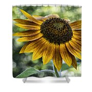 Sunflower Bokeh Shower Curtain