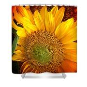 Sunflower Bright Shower Curtain