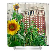 Sunflower City Shower Curtain