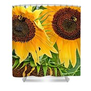 Sunflower Close Up Shower Curtain