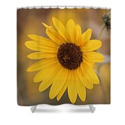 Sunflower Closeup Shower Curtain