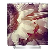 Sunflower Digital Art Shower Curtain