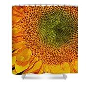 Sunflower Digital Painting Shower Curtain
