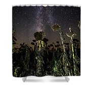 Sunflower Field At Night Shower Curtain