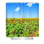 Sunflower Fields Forever Shower Curtain