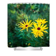 Sunflower Group Session Shower Curtain