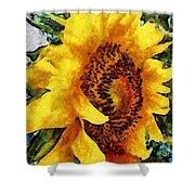 Sunflower Heart Shower Curtain