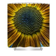 Sunflower In Rain Shower Curtain