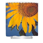 Sunflower In The Corner Shower Curtain