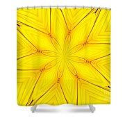 Sunflower Kaleidoscope 1 Shower Curtain