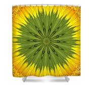 Sunflower Kaleidoscope 3 Shower Curtain