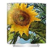 Sunflower Light Shower Curtain