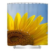 Sunflower Looking Up Shower Curtain