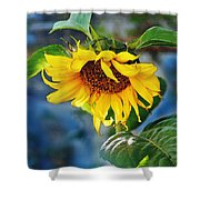 Sunflower Magic I Shower Curtain