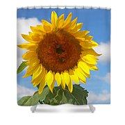 Sunflower Nirvana 30 Shower Curtain