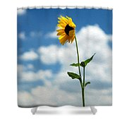 Sunflower On Route 66 Shower Curtain