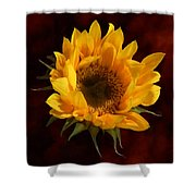 Sunflower Opening Shower Curtain