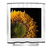 Sunflower Original Signed Mini Shower Curtain