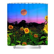 Sunflower Patch And Moon  Shower Curtain