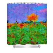 Sunflower Rhapsody Shower Curtain