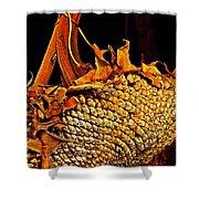Sunflower Seeds In Oils Shower Curtain