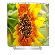 Sunflower Side Portrait Shower Curtain