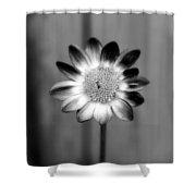 Sunflower Single Shower Curtain