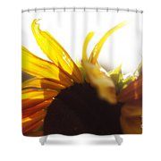Sunflower Sunlight Shower Curtain