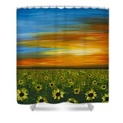 Sunflower Sunset - Flower Art By Sharon Cummings Shower Curtain by Sharon Cummings