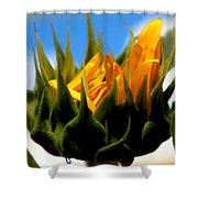 Sunflower Teardrop Shower Curtain