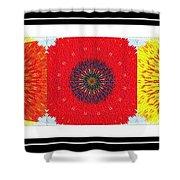 Sunflower Trio - Triptych - Flowers Shower Curtain