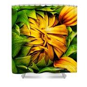 Sunflower Volunteer Shower Curtain