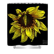 Sunflower With Contours Effect Shower Curtain