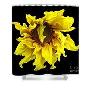 Sunflower With Curlicues Effect Shower Curtain