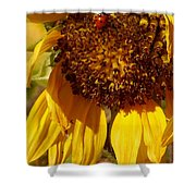Sunflower With Ladybug Shower Curtain