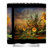 Sunflowers Shower Curtain by Adrian Evans